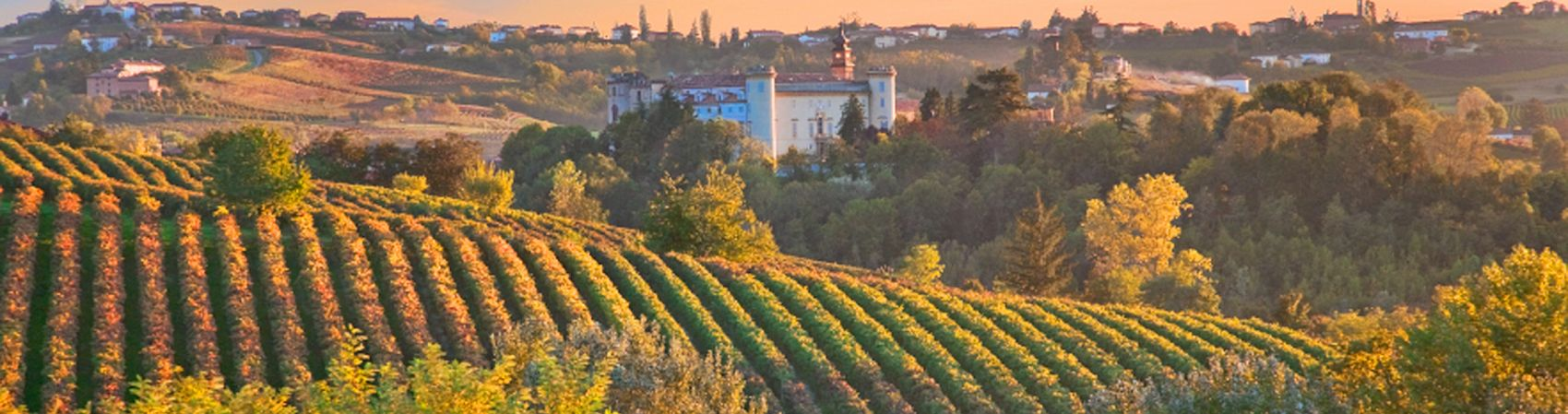 Best Chianti Wineries in Tuscany