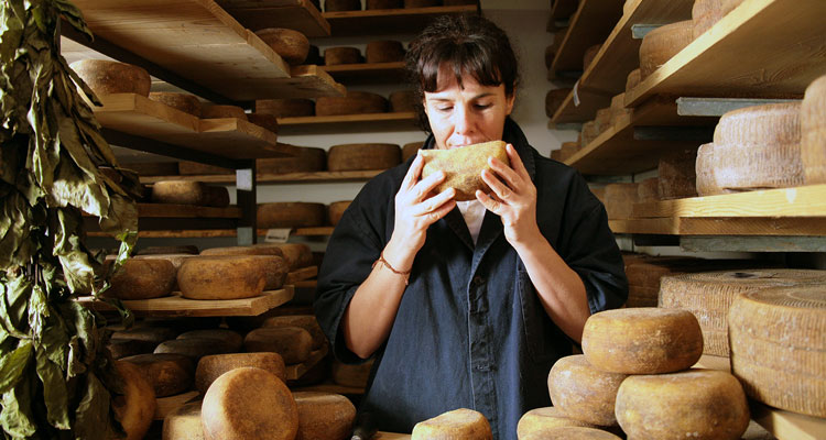 Cheese farm tour in Pienza and Orcia Valley